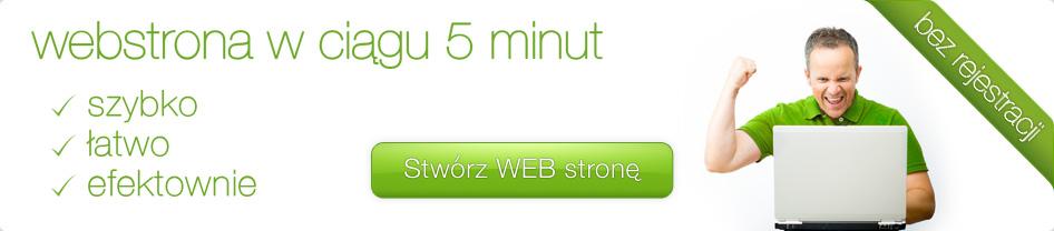 webstrona w ciągu 5 minut